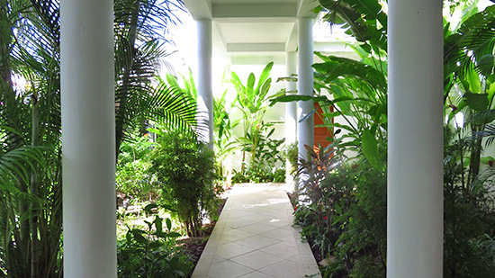 lush gardens that surround the villa suite