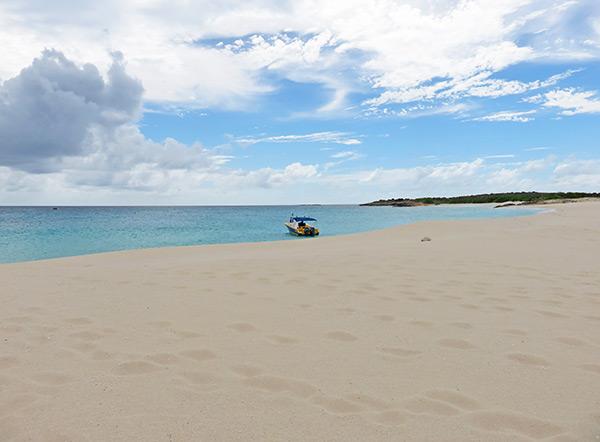 dog island with shoal bay scuba