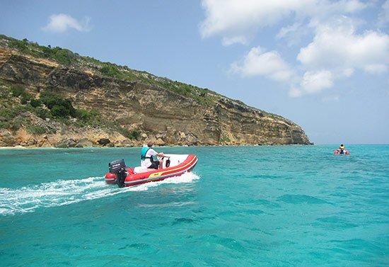 ocean anguilla