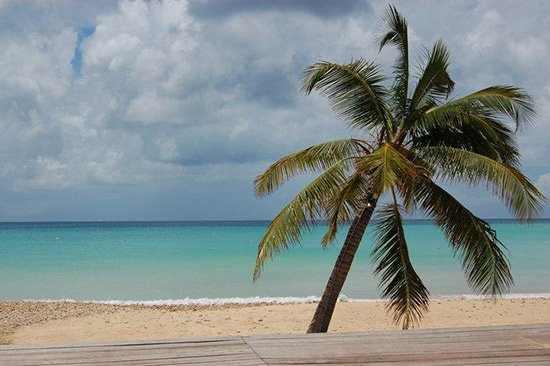 natalie trimm anguilla photo