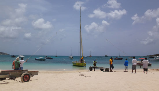 setting up the mast on racing boat de tree
