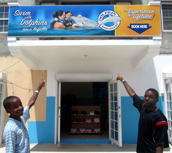 dolphin discovery anguilla office