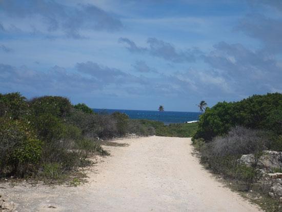 beach road to savannah bay