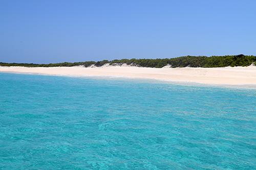 scrub island bay