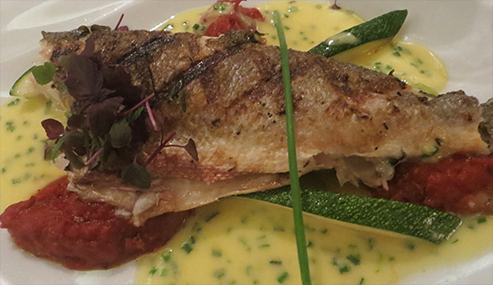 the sea bass special