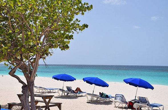 Anguilla restaurants, lunch, Shoal Bay