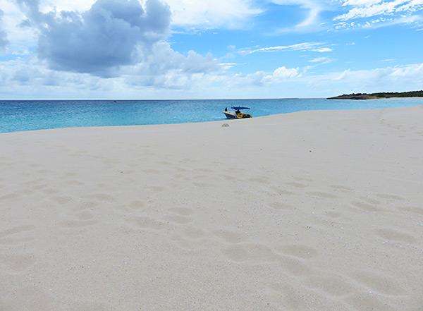 shoal bay scuba at dog island