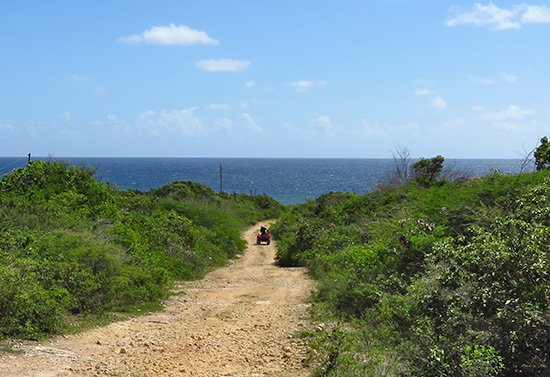off roading on atv rentals in anguilla