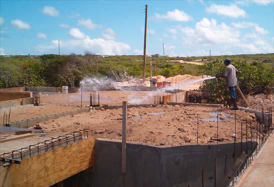 Calvin watering backfill