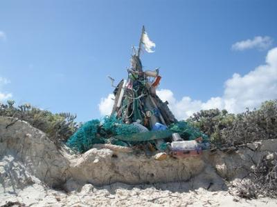 Beach Art on Shoal Bay