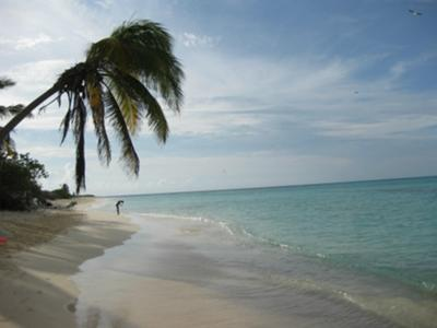 Best Beaches in the world!