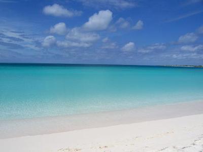 Amazing Rendezvous Bay