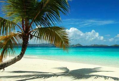 Best Beach On St Johns Usvi