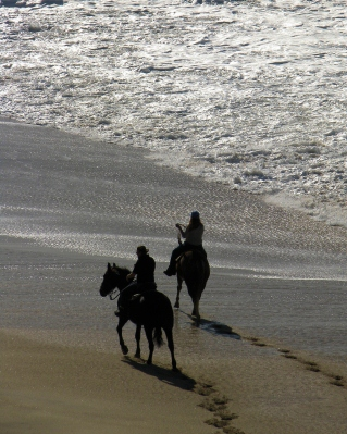 Oh to ride horseback down the beach with the one you love!