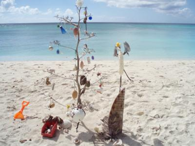 Another Special Anguilla Christmas Tree!